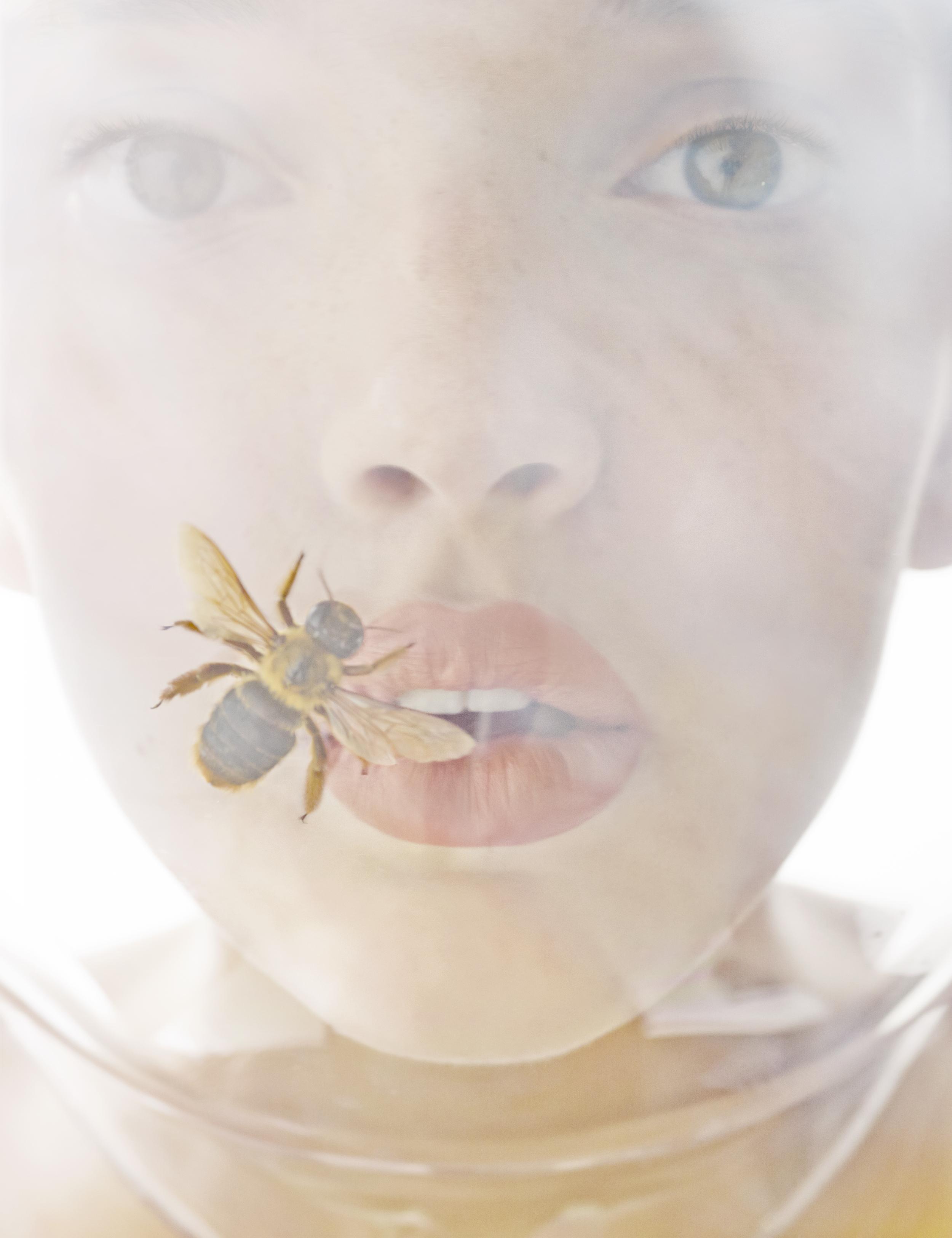 1-8-Let-it-bee